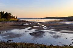 Beach (Frode....) Tags: beach landscape tomma strand landskap helgeland ocean coast fjære sea husby nordland norway