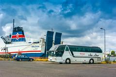 Neoplan Starliner (Konrad Krajewski) Tags: neoplan starliner