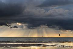 Tough guys! (karindebruin) Tags: bff brouwersdam goereeoverflakkee nederland ouddorp zonsondergang zuidholland beach clouds reflection sand sea sunset water wind wolken