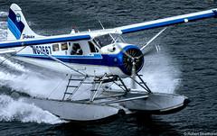 Seaborne Becoming Airborne (Robert Streithorst) Tags: airplane alaska float goldenprincess juneau pilot robertstreithorst seaplane taguan takeoff aircraft