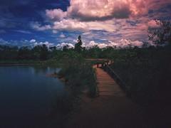 Parque Nacional de Brasília (rvcroffi) Tags: parque nacional brasilia natureza lago lagoa ponte madeira nuvens entardecer nature lake lagoon bridge wood evening