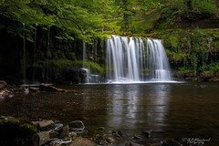 Seclusion (Through_Urizen) Tags: breconbeacons category places riverneath sgwdddwliuchaf theelidirtrail wales waterfall canon70d canon1585mm canon outdoor landscapephotography nature natural woodland water river plungepool pool stream cascade rocks trees shore forest uk greatbritain