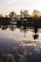 Barra Bonita (Fe_Lima) Tags: park sunset sun sunlight art sunshine closeup brasil contrast landscape 50mm reflecting reflex nikon colorful sigma sp bonita lovely barra reflexo goldenhour goldenlight barrabonita aoarlivre f14f sigmaart sigmaart50mmf14 nikond750