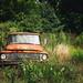 Old International Harvester Truck - Orchard Hill, Georgia