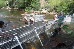 Weir A-Frames and Panels