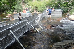 Securing weir along the substrate