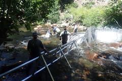 Rigid Weir Install
