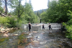 Near Complete Weir