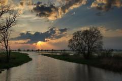 *** (pszcz9) Tags: polska poland przyroda nature natura naturaleza wiosna spring ujściewarty wartamouth woda water zachódsłońca sunset pejzaż landscape beautifulearth sony a77