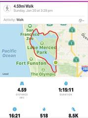 #LakeMerced #theLake #SanFrancisco (Σταύρος) Tags: january20 jan20 sunday statistics stats cardio exercise mapmywalk lakemerced thelake sanfrancisco sf city sfist thecity санфранциско sãofrancisco saofrancisco サンフランシスコ 샌프란시스코 聖弗朗西斯科 norcal cali سانفرانسيسكو kalifornien californië kalifornia καλιφόρνια カリフォルニア州 캘리포니아 주 californie california northerncalifornia カリフォルニア 加州 калифорния แคลิฟอร์เนีย كاليفورنيا lake 湖 meer lac see λίμνη 호수 innsjø озеро sjö llyn echibi freshwaterlake tpc hardingpark park lm pacificrowingclub lagunadenuestraseñoradelamerced laguna rowingclub westlakevillage lakeshore parkmerced tpchardingpark 1963 workout
