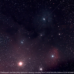 Rho Ophiuchi (achrntatrps) Tags: nébuleuse nebula nightshot d5300 nikon photographe photographer alexandredellolivo dellolivo lesbayards suisse nuit night nacht achrntatrps achrnt atrps radon200226 radon etoiles stars sterne estrellas stelle astronomie astronomy nicht noche notte suivi astrophotographie eosforastro halpha nikkor70200mmf28g antares rhoophiuchi astrotrac320x
