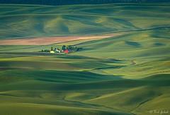 Palouse Splendor (robert_golub) Tags: fields steptoebutte washingtonstate redbarn green farm palouse