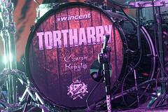 Tortharry 22