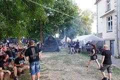 festiwal 65
