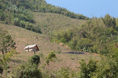 Lao Home On The Hill (peterkelly) Tags: digital canon 6d asia southeastasia indochinaencompassed gadventures laos house home hillslope hill trees mekongriver