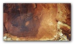 Big Crane Petroglyph #2 Color (gardnerphotos.com) Tags: bigcranepetroglyph bluffutah utah petroglyphs nativeamerican bearsearsnationalmonument combridge gardnerphotoscom desert mexicanhat butlerwash