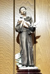 St Francis of Assisi (tomcomjr) Tags: samsung galaxy s7 android statues