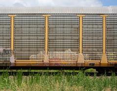 Erupto (quiet-silence) Tags: graffiti graff freight fr8 train railroad railcar art erupto a2m d30 dirty30 autorack csx ttgx986186