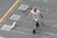Transeúnte con perro (dorieo21) Tags: streetphotography male man homme dog perro chien nikon d7200