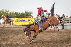 Vulcan Rodeo 2018 (tallhuskymike) Tags: vulcan alberta rodeo sidhartung 2018 action cowboy horse horses western outdoors event