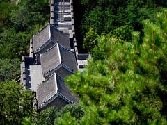 P1110707 (bvohra) Tags: beijing peking china mutianyu jingshanpark tiananmensquare forbiddencity greatwallofchina mutianyugreatwall beijingsubway beijingmainstation