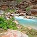 Havasu Creek - Grand Canyon