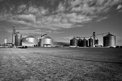 CHS Elburn - Explore #54 6-2-2019 - Maple Park IL (Meridith112) Tags: maplepark il illinois kanecounty farm farmequipment silo clouds cloud sky july 2019 summer blackandwhite bw mono nikon nikon2485 nikond610 elburncoop chs chselburn elburn grain grainsilos graincomplex 1978 100thanniversary meredithroad 38 meredith virgiltownship explore explored explore822019 rurallife bins grainbins gleaming reflection reflections sunlight