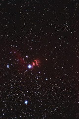 Flame & Horsehead Nebulae (inefekt69) Tags: flame horsehead nebula stack stacked astrophotography astronomy cosmology stars space island point western australia ioptron skytracker hoya red intensifier filter didymium 300mm sequator nikon d5500 lake clifton explore explored