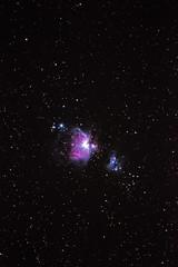Orion Nebula at 300mm - Guilderton, Western Australia (inefekt69) Tags: orion nebula stack stacked astrophotography astronomy cosmology stars space island point western australia ioptron skytracker 300mm sequator guilderton nikon d5500 explore explored