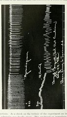 This image is taken from Page 66 of The Journal of laboratory and clinical medicine, 06 (Medical Heritage Library, Inc.) Tags: biological assay diagnosis laboratory disease medicine research gerstein toronto medicalheritagelibrary date1915 idjournaloflaborat06cent