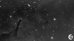 NGC6823 WiP [2019.08.01][FLICKR] (1CM69) Tags: ngc6823 celestron cpc925 apt cdc phd2 app ps astrophotographytool cartesduciel astropixelprocessor ha hydrogenalpha qhy174m