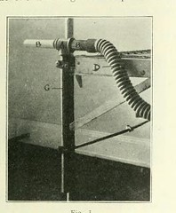 This image is taken from Page 75 of The Journal of laboratory and clinical medicine, 08 (Medical Heritage Library, Inc.) Tags: biological assay diagnosis laboratory disease medicine research gerstein toronto medicalheritagelibrary date1915 idjournaloflaborat08cent