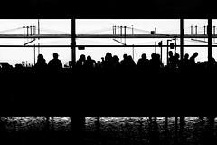 beachbar (heinzkren) Tags: schwarzweis blackandwhite biancoetnero noiretblanc urban silhouette people bar beach restaurant water club canon eosr austria strand street streetphotography candid molewest outside summer vacation party celebration mood light bw holiday