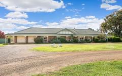 256 Inglewood Road, Lake Albert NSW