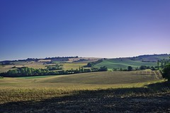 Lomagne in morning (@phr_photo) Tags: landscape paysage france lomagne gers midipyrénnées field rural campagne