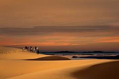 La meta (Va e VIENI) Tags: art ambrosioni deserto carovana sabbia oro dune