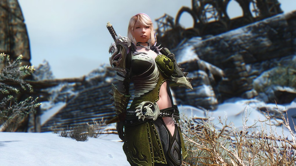 The World's newest photos of armor and skyrim - Flickr Hive Mind