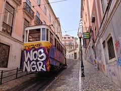Ascensor da Glória (Elad283) Tags: lisboa lisbon portugal carris ascensor glória ascensordaglória funicular glóriafunicular restauradores