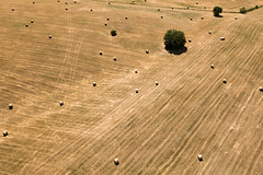 Drone Tuscany, Italy (Amelyushkin) Tags: drone copter dji mavic mavicpro aerial flight droneshoot sky dronephotography drones dronephoto italy travel tra travelphoto fuji rome pisa venice firenze naples nationalgeographic natgeo