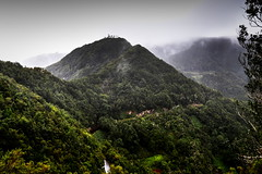 Tenerife Landscape (Strocchi) Tags: taborno santacruzdetenerife tenerife landscape forest woods fog spain canon eos6d 24105mm canaryislands lascarboneras sancristóbaldelalaguna parqueruraldeanaga