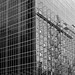 Glass Curtain Wall and Scaffolding