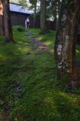 20190731x100f_4608 (Gansan00) Tags: x100f kyoto shiga 京都 滋賀 ブラリ旅 7月 summer fujifilm