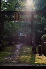 20190731x100f_4600 (Gansan00) Tags: x100f kyoto shiga 京都 滋賀 ブラリ旅 7月 summer fujifilm