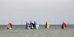 The Race to be Champion (Gill Stafford) Tags: gillstafford gillys image photograph wales northwales conwy llandudno victorian sea tourism recreation scorpiannationals dinghy championships race 2019