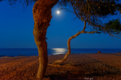 Mond - Mallorca - Canyamel (Peter Goll thx for +13.000.000 views) Tags: 2014 mallorca urlaub erlangen germany mittelmeer sea meer mond moon night nacht d800 nikon nikkor28300