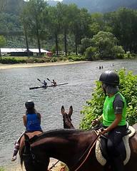 Viernes de #piragües2019!!!!!! . . . Cerramos hasta el lunes 5 de agosto en #Ribadesella seguimos abiertos en las #rutasacaballo de #celorio #Llanes . . . Vivan les piragües!!!!! Puxa Asturies!!!!!! #caballos #horses #rutasacaballo #paseosacaballo #piragü