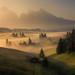 Seiser Alm meadows