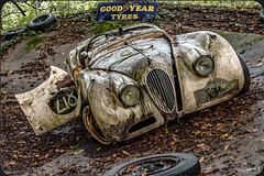 Lost Place - Jaguar XK 120 (wb.fotografie) Tags: auto old sculpture car forest rust alt skulptur 1950s jaguar rost scrap wald 1950 sportscar sculpturepark moder schrott skulpturenpark custodian sportwagen marode vermodert fouled kustwerk xt120 autoskulpturenpark autoskulpturen lostplace