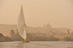 Faluca en Asuán (Egipto) (Carlos Arriero) Tags: aswan egipto asuán egypt faluca faluco barco composición composition viajar travel carlosarriero nikon d800e 70200mmf28 nilo river río agua water natgeo nature naturaleza