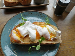 Poached Eggs at the Plau Bar in Preston (Tony Worrall) Tags: images photos photograff things uk england food foodie grub eat eaten taste tasty cook cooked iatethis foodporn foodpictures picturesoffood dish dishes menu plate plated made ingrediants nice flavour foodophile x yummy make tasted meal nutritional freshtaste foodstuff cuisine nourishment nutriments provisions ration refreshment store sustenance fare foodstuffs meals snacks bites chow cookery diet eatable fodder ilobsterit instagram forsale sell buy cost stock preston plau bar pub inn eggs poachedeggs runny
